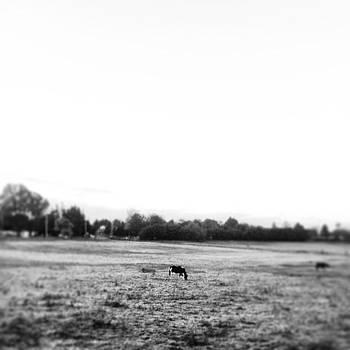 Instagram Photo by Julia Otulak