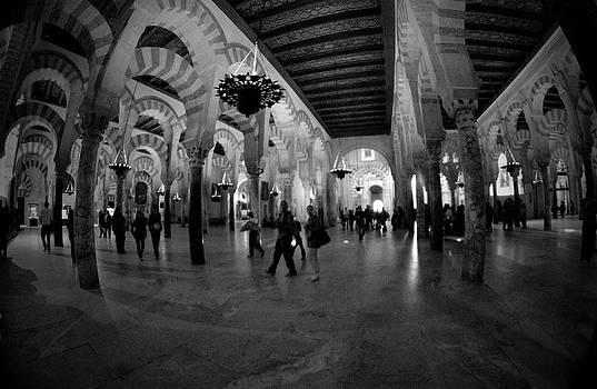 8mm Fisheye by Alicia Morales