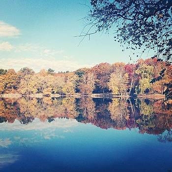 Jamaica Pond in Autumn by Anne Phillips
