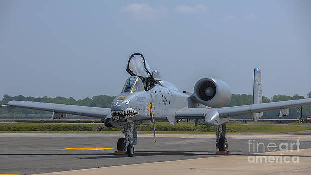 Dale Powell - A-10 Thunderbolt Warthog