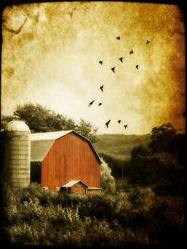 Gothicrow Images - A Barn