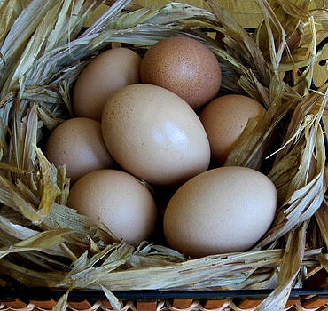 Venetia Featherstone-Witty - A Basket of Eggs