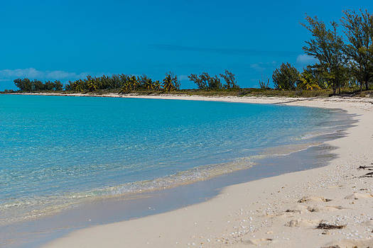 A Beach in Paradise by Michael Hunter