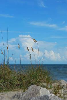 Bob Sample - A Beautiful Day At The Beach