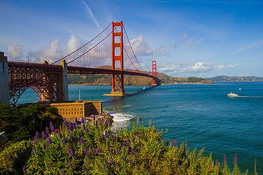 A Beautiful Day in San Fran by Anthony Mascari