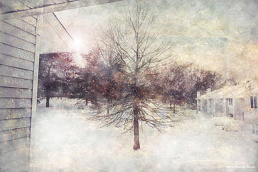 A Beautiful Snowfall by Michelle Gross