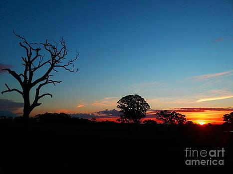 A beautiful sunset that was mistaken for a dawn by Fir Mamat