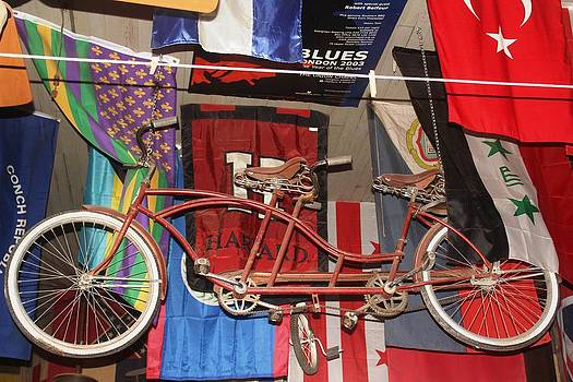 A Bicycle Built for Two by Suzanne  McClain