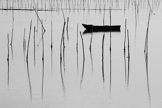 A boat... in a Jungle of Poles by Mattia Oselladore