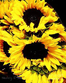 Nancy Stein - A Bouquet Of Sunshine