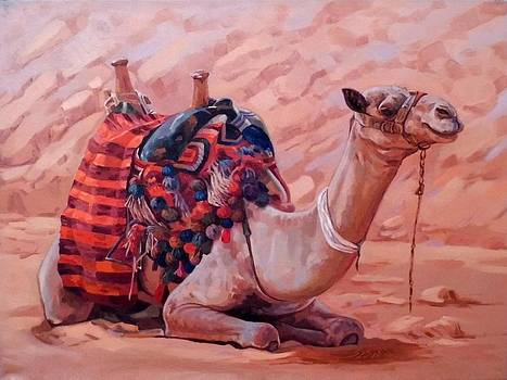 A Break in Sinai Desert by Ahmed Bayomi