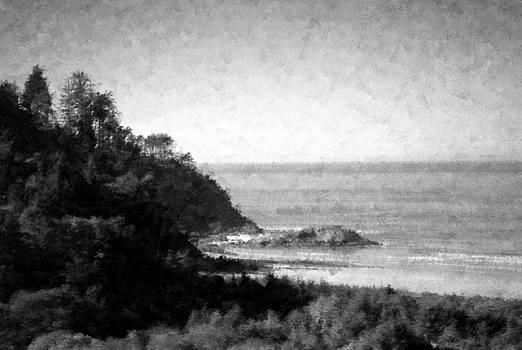 Joyce Dickens - A Breathtaking View Impressionism B N W