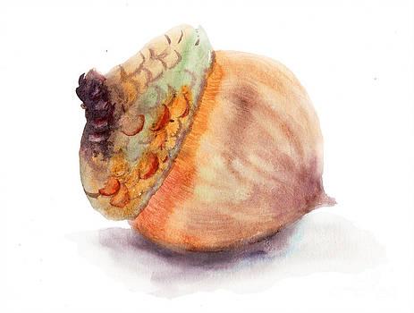 A brown acorn by Regina Jershova
