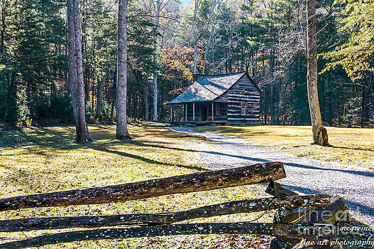 A Cabin in Cades Cove by Marilyn Carlyle Greiner