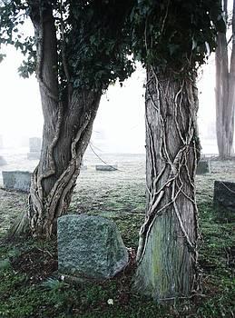 Robin Mahboeb - a cemetery scene 2