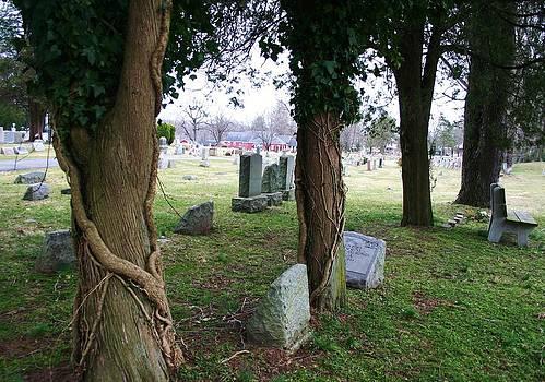 Robin Mahboeb - a cemetery scene