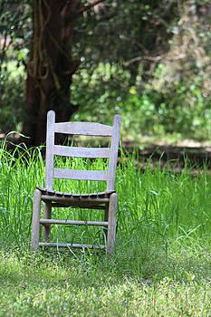 A Chair in the Grass by Lynn Jordan