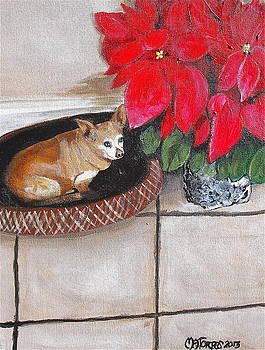 A Chihuahua Christmas by Melissa Torres