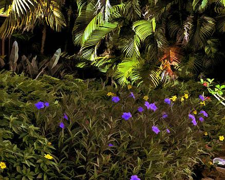 A Corner Garden by Sandy Poore