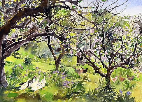 A Cornish Orchard in Spring by Margaret Merry