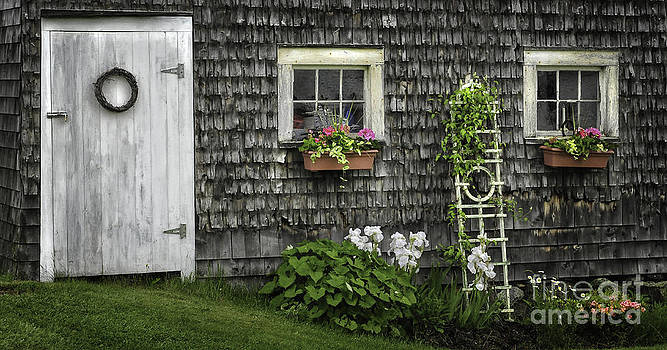 Thomas Schoeller - A Cottage Garden - Essence of Mid Coast Maine