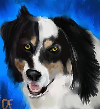 A dog... by Dakota Eichenberg