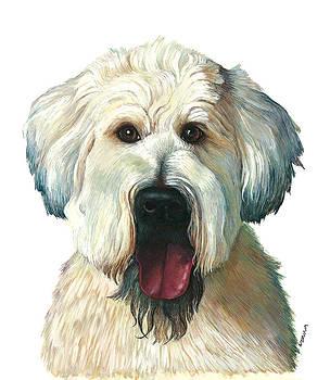 A Dog who stole my heart... by Nonna Mynatt