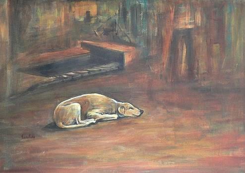 Usha Shantharam - A Dog