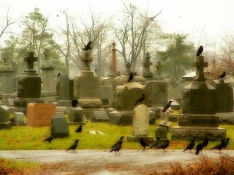 Gothicrow Images - A Fall Gathering Of Crows