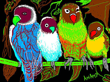 Anand Swaroop Manchiraju - A  FAMILY OF PARROTS-7