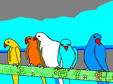 Anand Swaroop Manchiraju - A  FAMILY OF PARROTS