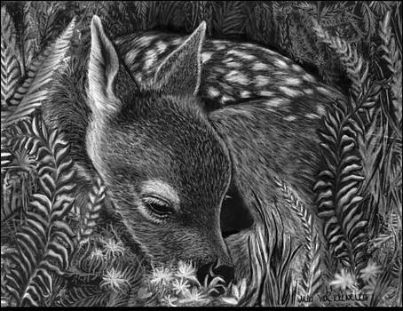 A Fawn in the Ferns by Miki Krenelka