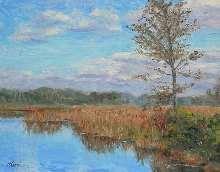 A Feeling of Stillness by Michael Camp