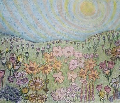 A field by Anat Kardontchik