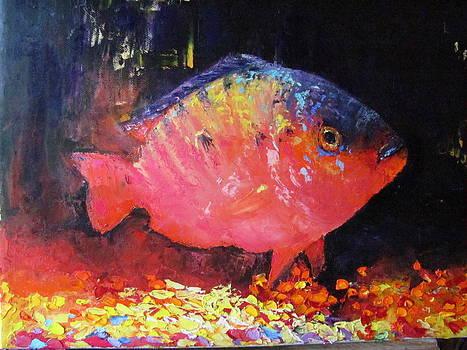 A Fish Called Jack by Sheila Gunter