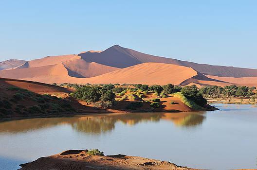 A flooded Sossusvlei in the Namib Desert  by Grobler Du Preez