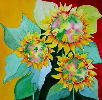 A Flora Borealis by Laura Nance