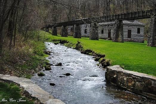 A Flowing Creek  by Anna Liza Jones