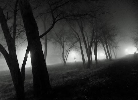 A Foggy Night by Cathyzcreations  Cathy Randall