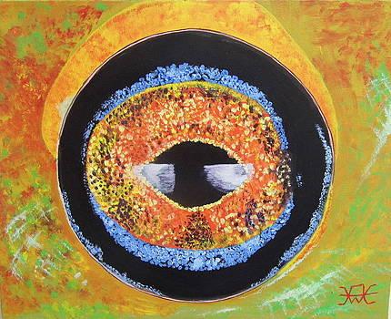 A frogs eye view by Alan Wilkinson