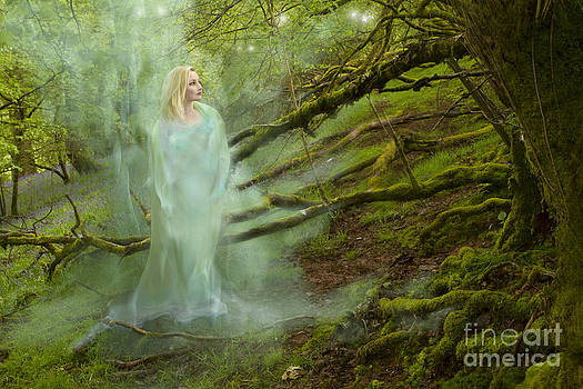 Angel Ciesniarska - a ghost in the forest