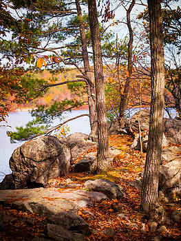 A Glimpse of Ramapo Lake by Jim DeLillo