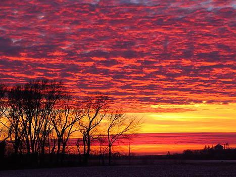 A Glorious Unfolding by Lori Frisch