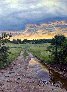 A Goodnight Rain by Lena Quagliato