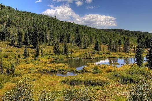 Bob Hislop - A Grand Mesa view