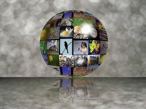 A great big shiny world by Jeffrey Platt