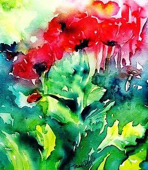 A Haze of Poppies by Trudi Doyle
