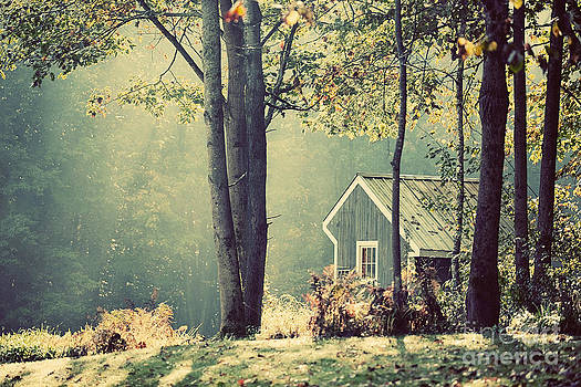 A House on a Hill by Katya Horner