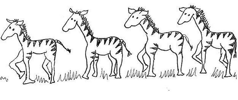 Cherie Sexsmith - A line of Zebras