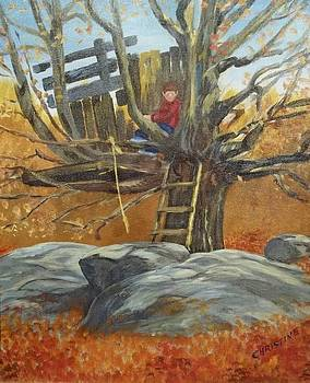 A Little Boys Dreaming Place by Christine Krantz